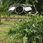 bienvenue dans mon jardin (7)